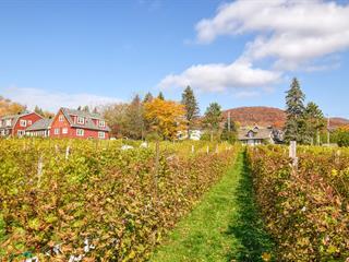 Maison à vendre à Mont-Saint-Hilaire, Montérégie, 1194, Chemin de la Montagne, 20871594 - Centris.ca