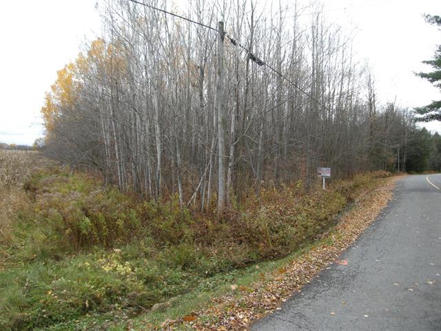 Terrain à vendre à Acton Vale, Montérégie, Chemin  Fournier, 17143983 - Centris.ca