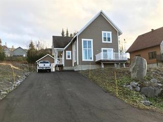 Chalet à vendre à Saint-David-de-Falardeau, Saguenay/Lac-Saint-Jean, 48, Rue de Whistler, 11710403 - Centris.ca
