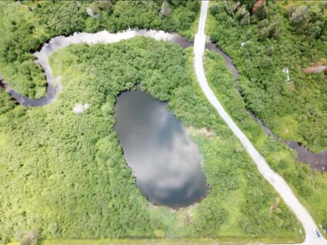 Terrain à vendre à Saints-Martyrs-Canadiens, Centre-du-Québec, Route  161, 10435197 - Centris.ca
