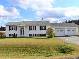 Maison à vendre à Saint-Augustin-de-Woburn, Estrie, 777, Chemin des Lignes, 10463535 - Centris.ca