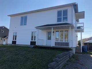 Immeuble à revenus à vendre à L'Anse-Saint-Jean, Saguenay/Lac-Saint-Jean, 17Z, Rue  Gagné, 15277486 - Centris.ca