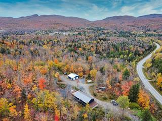 Maison à vendre à Bolton-Est, Estrie, 2623, Route  Nicholas-Austin, 22991740 - Centris.ca