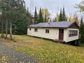 Maison à vendre à Preissac, Abitibi-Témiscamingue, 203, Avenue du Lac, 28229935 - Centris.ca