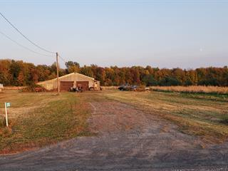 Terre à vendre à Noyan, Montérégie, 212, Chemin de la 2e Concession, 12863155 - Centris.ca