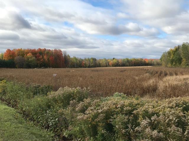 Land for sale in Saint-Urbain-Premier, Montérégie, Chemin de la Grande-Ligne, 20440748 - Centris.ca