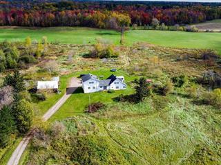 House for sale in L'Isle-aux-Allumettes, Outaouais, 217, Chemin  Gagnon, 23867650 - Centris.ca