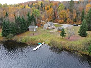 House for sale in L'Ascension, Laurentides, 386, Chemin du Lac-du-Gros-Brochet, 11798380 - Centris.ca
