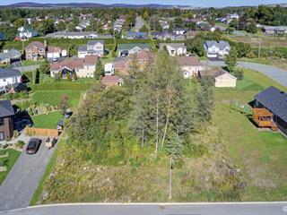 Terrain à vendre à Thetford Mines, Chaudière-Appalaches, Rue  Denis, 28078374 - Centris.ca