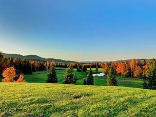 Land for sale in Arundel, Laurentides, Route de Crystal Falls, 17196009 - Centris.ca
