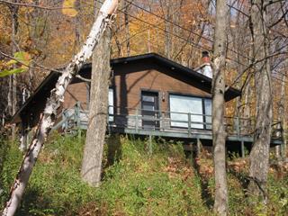 Maison à vendre à Saint-Sauveur, Laurentides, 30, Chemin de la Montagne, 24278938 - Centris.ca