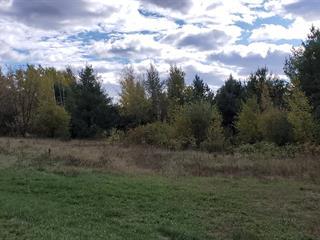 Terrain à vendre à Shawinigan, Mauricie, Chemin des Dubois, 9932030 - Centris.ca