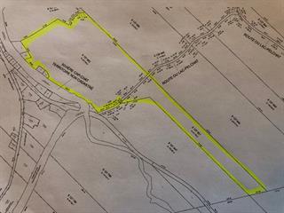 Terre à vendre à Cap-Chat, Gaspésie/Îles-de-la-Madeleine, Route du Lac-Pelchat, 28672551 - Centris.ca