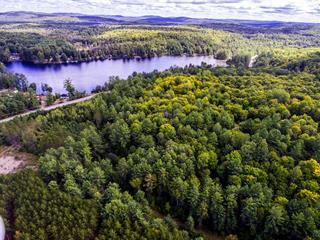 Lot for sale in Otter Lake, Outaouais, Route  303, 11286903 - Centris.ca