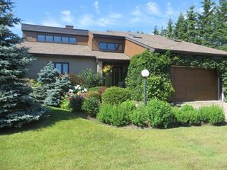 House for sale in La Sarre, Abitibi-Témiscamingue, 68, Rue  Saulnier, 11090095 - Centris.ca