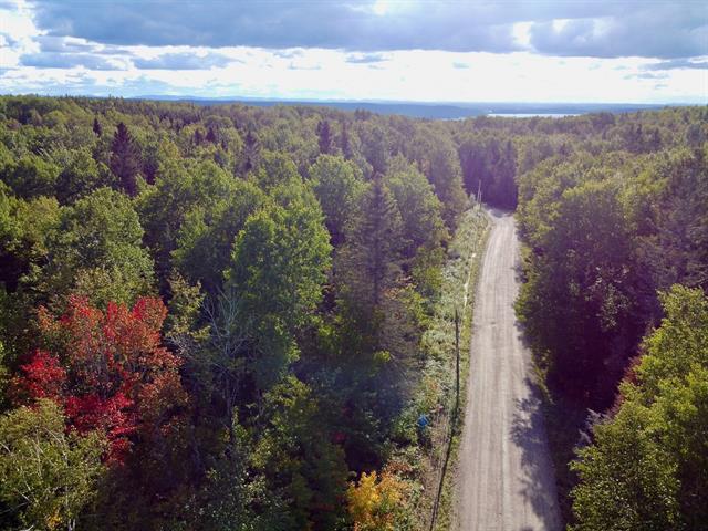 Lot for sale in Sainte-Rose-du-Nord, Saguenay/Lac-Saint-Jean, Chemin du Cap-à-l'Est, 16851701 - Centris.ca