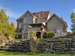 Maison à vendre à Saint-Roch-de-l'Achigan, Lanaudière, 36Z, Rue des Méandres, 25036313 - Centris.ca