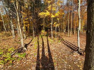 Lot for sale in Mayo, Outaouais, Chemin  Burke, 14429127 - Centris.ca