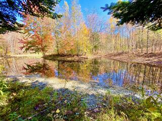 Hobby farm for sale in Cowansville, Montérégie, 110, Rue  Pépin, 17864358 - Centris.ca