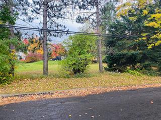 Terrain à vendre à Cowansville, Montérégie, Rue des Plaines, 25765260 - Centris.ca