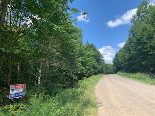 Terrain à vendre à Wentworth, Laurentides, Chemin des Castors, 24700505 - Centris.ca