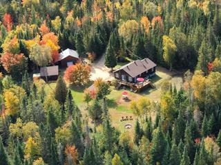 Maison à vendre à Lac-Supérieur, Laurentides, 110, Chemin des Fraises, 17122346 - Centris.ca