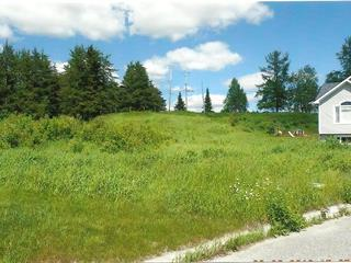 Lot for sale in La Sarre, Abitibi-Témiscamingue, 1, Avenue des Saules, 27920988 - Centris.ca