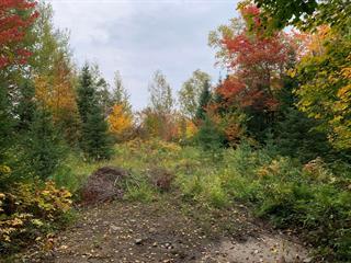 Terrain à vendre à Val-Morin, Laurentides, Rue  Morin, 26779068 - Centris.ca