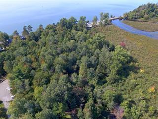 Terrain à vendre à Lac-Brome, Montérégie, Chemin  Lakeside, 20173962 - Centris.ca