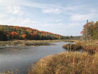 Terrain à vendre à La Pêche, Outaouais, 91, Montée  Chartrand, 26451774 - Centris.ca