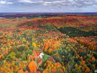 Fermette à vendre à Inverness, Centre-du-Québec, 1033, 8e-et-9e Rang, 11425780 - Centris.ca