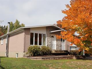Maison à vendre à Saint-Damien-de-Buckland, Chaudière-Appalaches, 13, Rue de la Rivière, 9254858 - Centris.ca