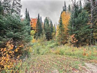 Terrain à vendre à Amherst, Laurentides, Route  323 Nord, 18111632 - Centris.ca
