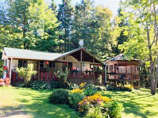 House for sale in Otter Lake, Outaouais, 179, Chemin du Ranch, 19536945 - Centris.ca