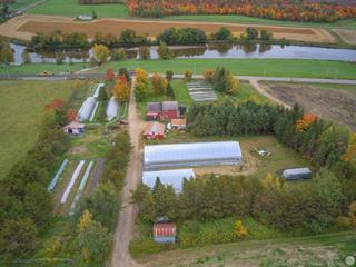 Fermette à vendre à Laurierville, Centre-du-Québec, 361, Chemin de la Grosse-Île, 22439800 - Centris.ca