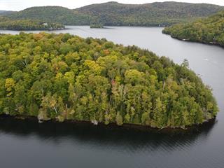 Land for sale in Barkmere, Laurentides, 3040, Chemin du Lac-des-Écorces, 14665155 - Centris.ca