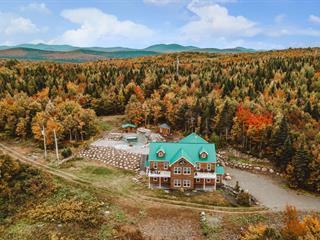 Bâtisse commerciale à vendre à Val-Racine, Estrie, 215, Chemin de la Forêt-Enchantée, 10944612 - Centris.ca