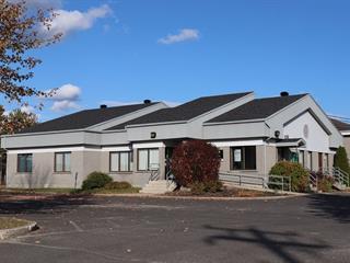 Bâtisse commerciale à vendre à Armagh, Chaudière-Appalaches, 2, Rue du Plateau, 21331356 - Centris.ca
