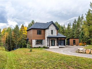 Maison à vendre à Saint-Faustin/Lac-Carré, Laurentides, 40, Place des Violettes, 24143408 - Centris.ca