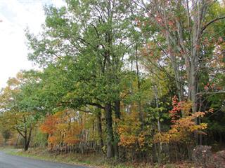 Terrain à vendre à Hatley - Canton, Estrie, Avenue  Winget, 20143223 - Centris.ca