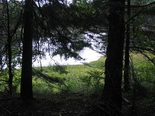 Terrain à vendre à Linton, Capitale-Nationale, Rang de la Rivière Batiscan, 14504576 - Centris.ca