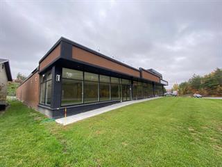 Commercial unit for rent in Chelsea, Outaouais, 7, Chemin  Alonzo-Wright, suite C, 26321167 - Centris.ca