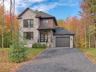 Maison à vendre à Farnham, Montérégie, 41, Rue  Rainville, 16203371 - Centris.ca