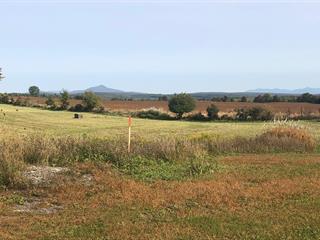 Hobby farm for sale in Saint-Armand, Montérégie, 528, Chemin de Morse's Line, 27607663 - Centris.ca