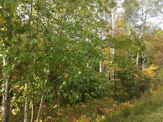 Terrain à vendre à Lac-Beauport, Capitale-Nationale, Chemin des Lacs, 11481057 - Centris.ca