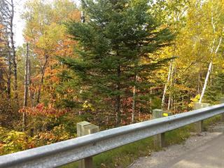 Terrain à vendre à Lac-Beauport, Capitale-Nationale, Chemin des Lacs, 27295608 - Centris.ca