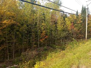 Terrain à vendre à Lac-Beauport, Capitale-Nationale, Chemin des Lacs, 9846279 - Centris.ca