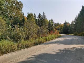 Terre à vendre à Saint-Donat (Lanaudière), Lanaudière, Chemin du Lac-Baribeau, 24154264 - Centris.ca