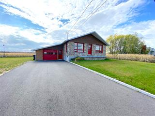 Maison à vendre à Notre-Dame-du-Bon-Conseil - Village, Centre-du-Québec, 271, Rue  Biron, 11355310 - Centris.ca