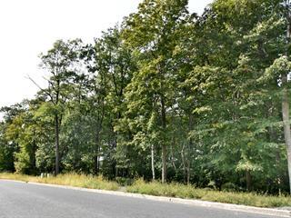 Terrain à vendre à Mont-Saint-Hilaire, Montérégie, Rue du Sommet, 20015439 - Centris.ca